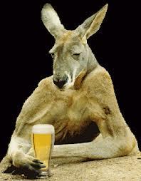 kangaroos_bière